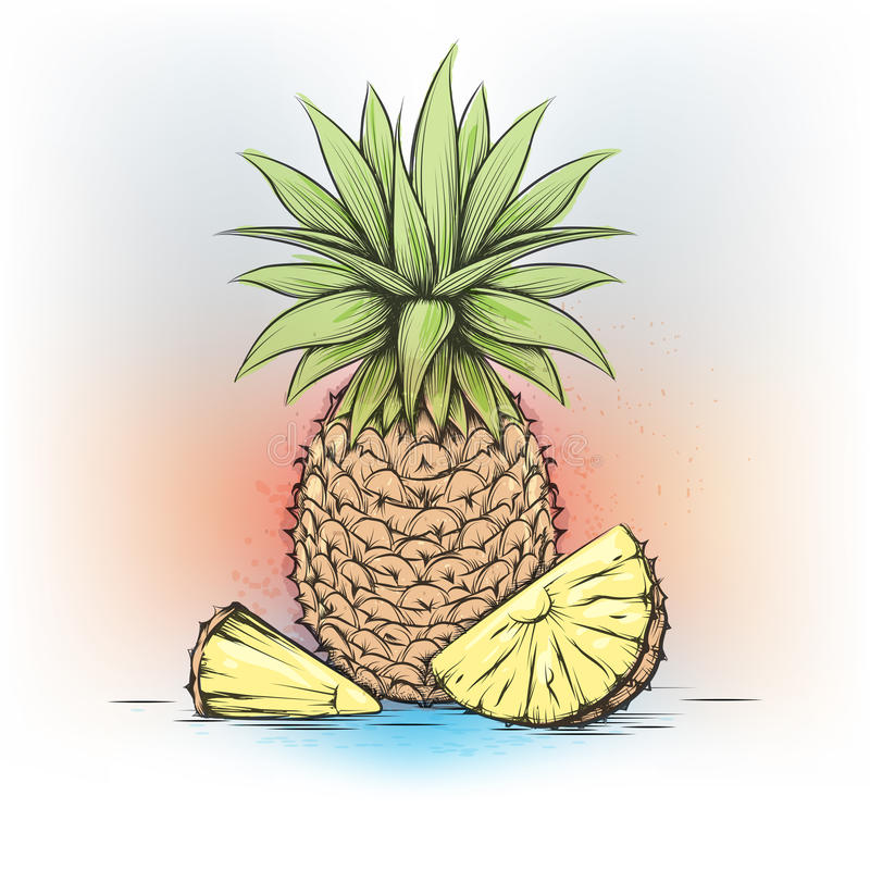 Ananas variopinto dell'acquerello illustrazione vettoriale