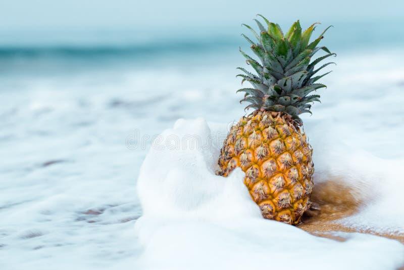 Ananas w kiści fala obraz stock