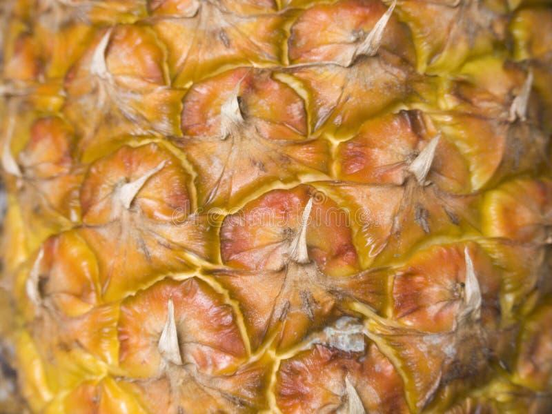 Ananas01