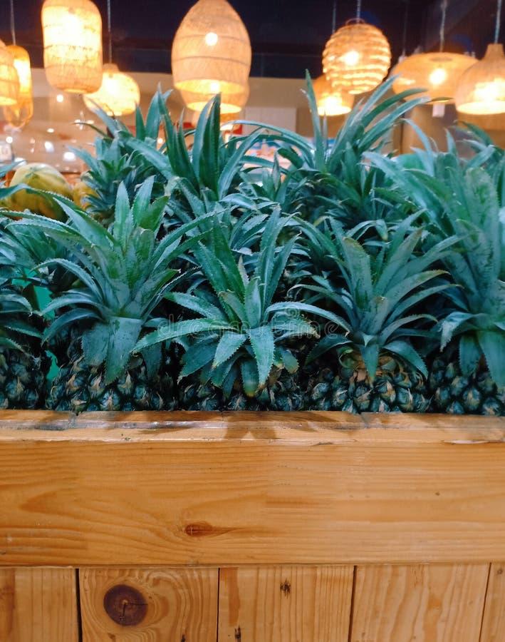 Ananasa liść w rzemiosła drewna pudełku zdjęcia royalty free