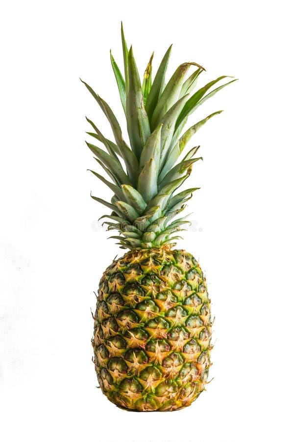Ananasfrucht lokalisiert auf weißem Hintergrund stockfotos