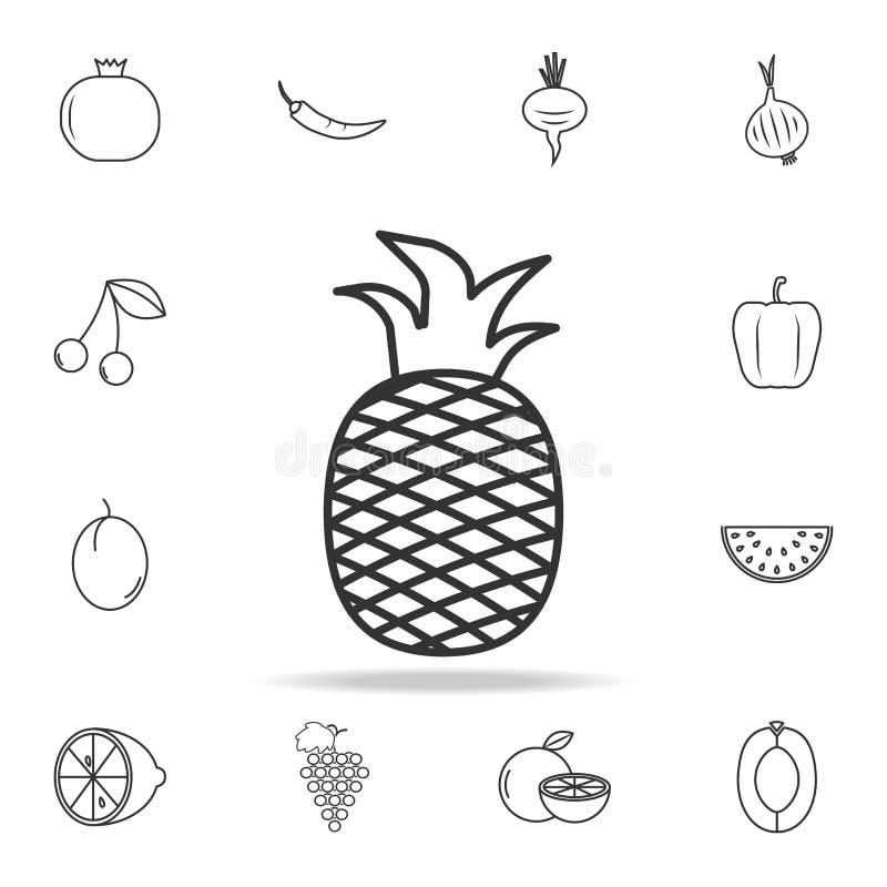 Ananasikone Satz der Obst- und Gemüse Ikone Erstklassiges Qualitätsgrafikdesign Zeichen, Entwurfssymbolsammlung, einfaches dünnes stock abbildung