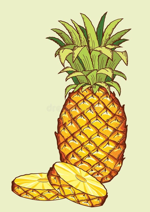 Ananasowa owoc ilustracja wektor