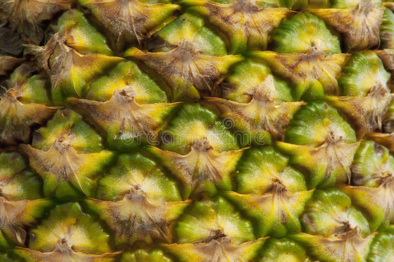 Ananasowa skóra obrazy stock