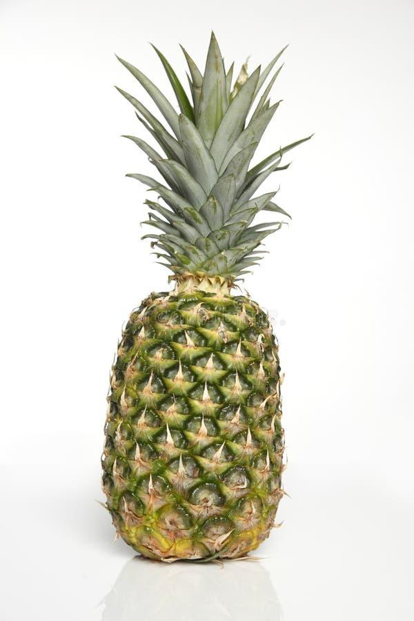 ananasowy biel fotografia stock