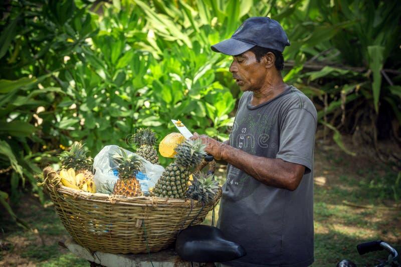 Ananasowy handlowiec w Sri Lanka obrazy stock