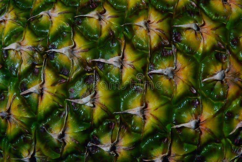 Ananasowy tekstury tło obrazy royalty free