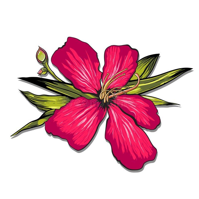 Ananassen en de Tropische Achtergrond van de Bloemenmeetkunde - Uitstekend Naadloos Patroon - in vector stock illustratie
