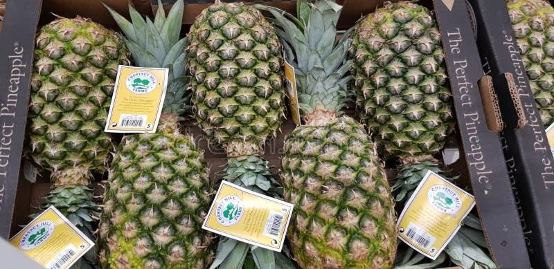 Ananassen op de teller op verkoop in de opslag worden opgemaakt die stock foto
