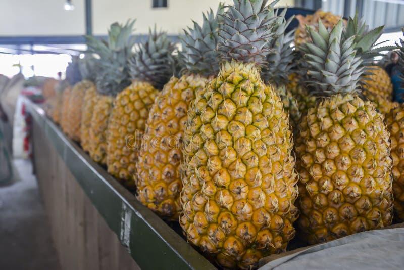 Ananassen op een lokale markt in Nadi, Fiji royalty-vrije stock afbeeldingen