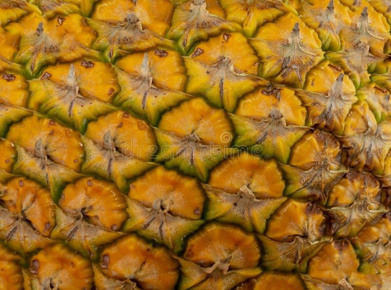 ananasshell textuur stock foto
