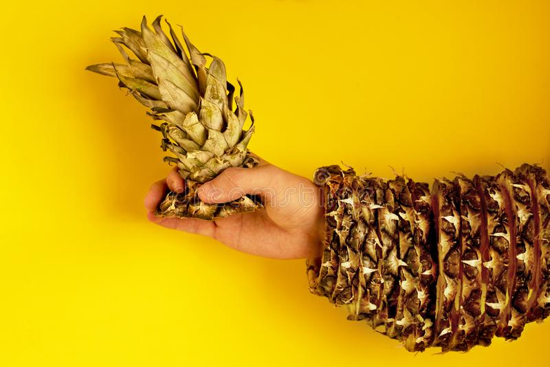 Ananasspitze mit Blättern in der Hand und der Rest der Haut lizenzfreie stockfotografie