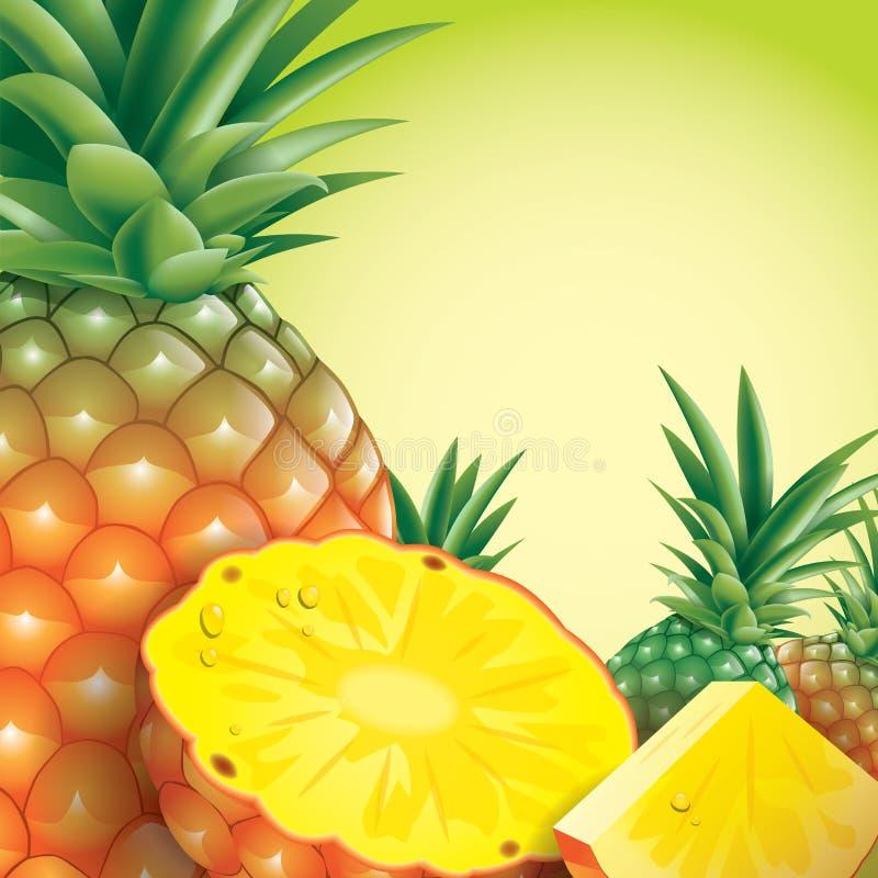 Ananasvektorillustration på grön bakgrund vektor illustrationer