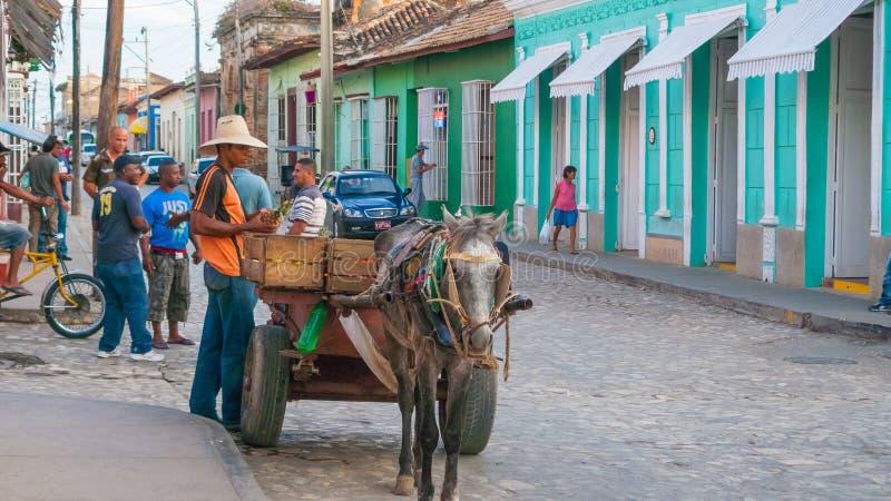 Ananasverkoper in de straat Cuba van Trinidad royalty-vrije stock foto's