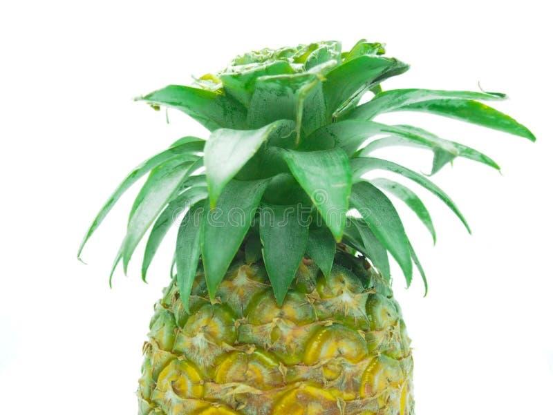 Download Ananasy obraz stock. Obraz złożonej z greenbacks, deliciouses - 106901297