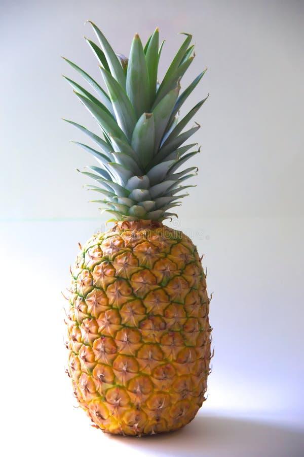 ananasy owoc strzał kolorowe zdjęcie Biały tło obraz royalty free