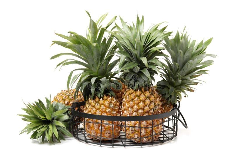 ananasy Smakosz, owoc zdjęcie royalty free