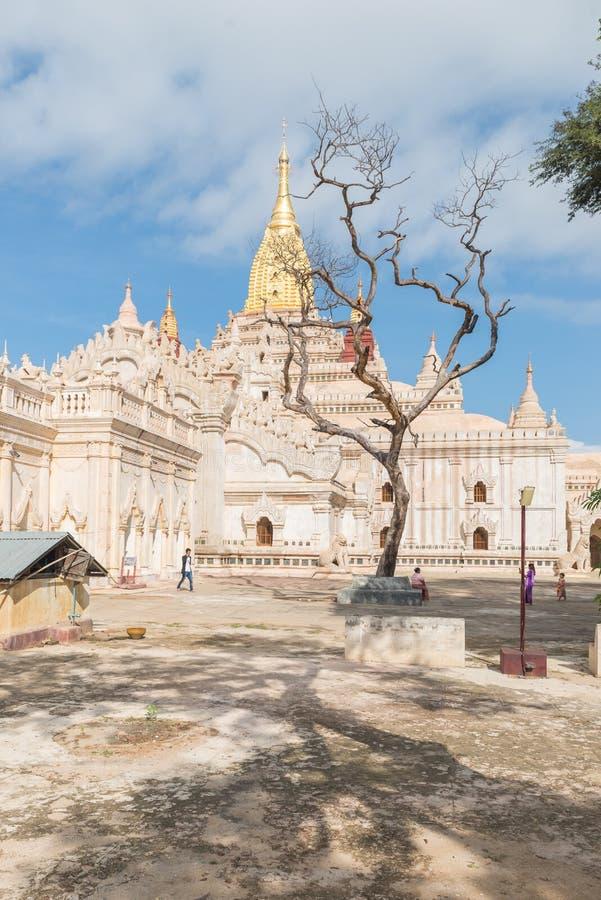 Ananda Paya, Bagan, Myanmar stock foto