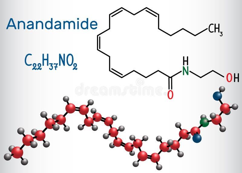 Anandamide molekuła Ja jest endogenicznym cannabinoid neurotransmitt ilustracji