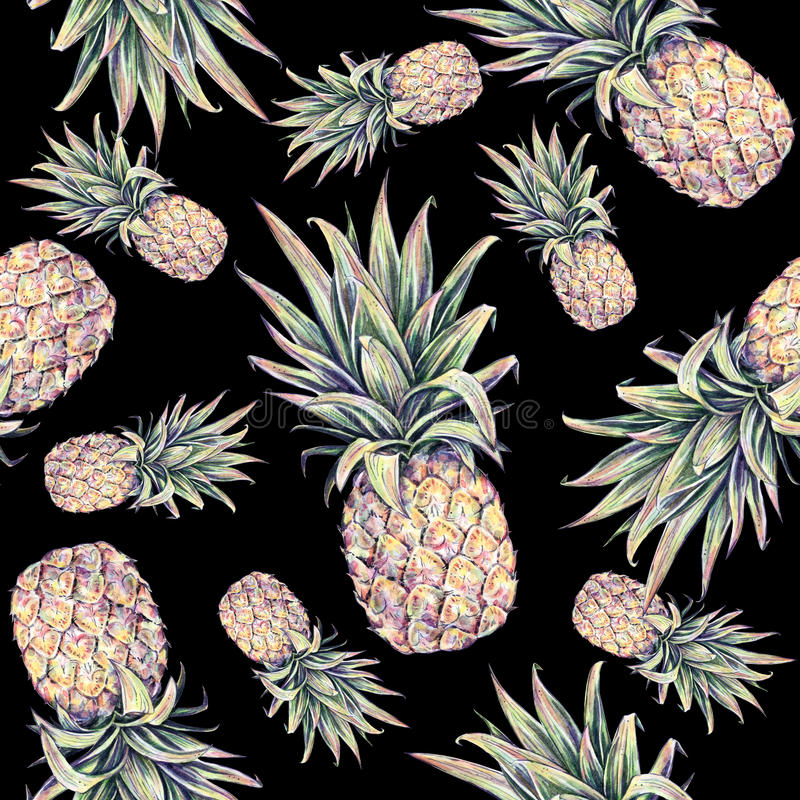 Ananors på en svart bakgrund Färgglad illustration för vattenfärg tropisk frukt seamless modell stock illustrationer