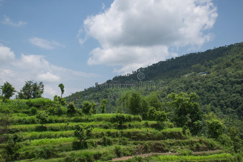 Ananpurnabergketen, Nepal royalty-vrije stock fotografie