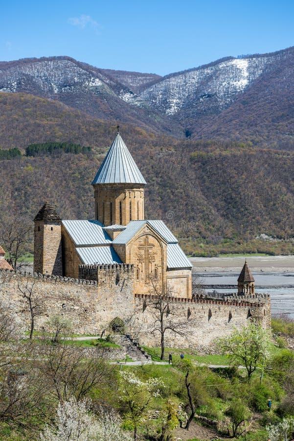 Ananuri slott royaltyfria bilder