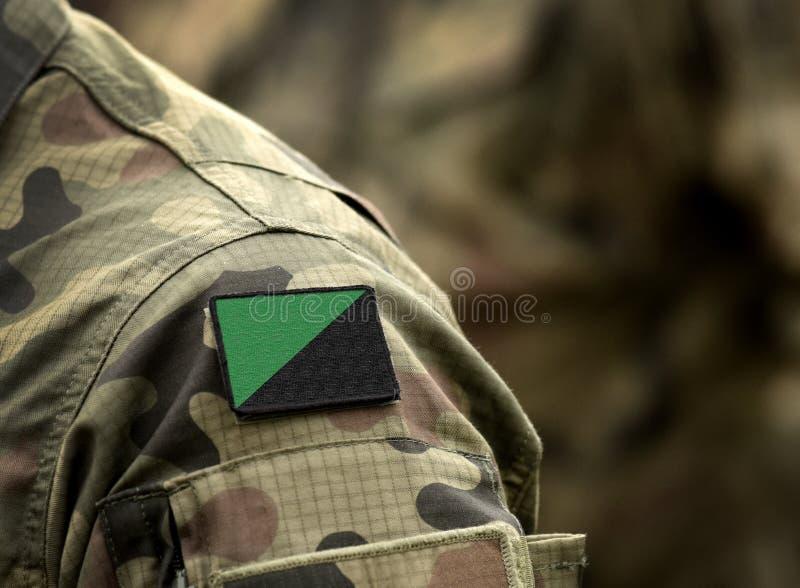 Anarchisme vert, ou drapeau éco-anarchiste sur l'uniforme militaire Drapeau de l'Anarcho-primitivisme photos stock