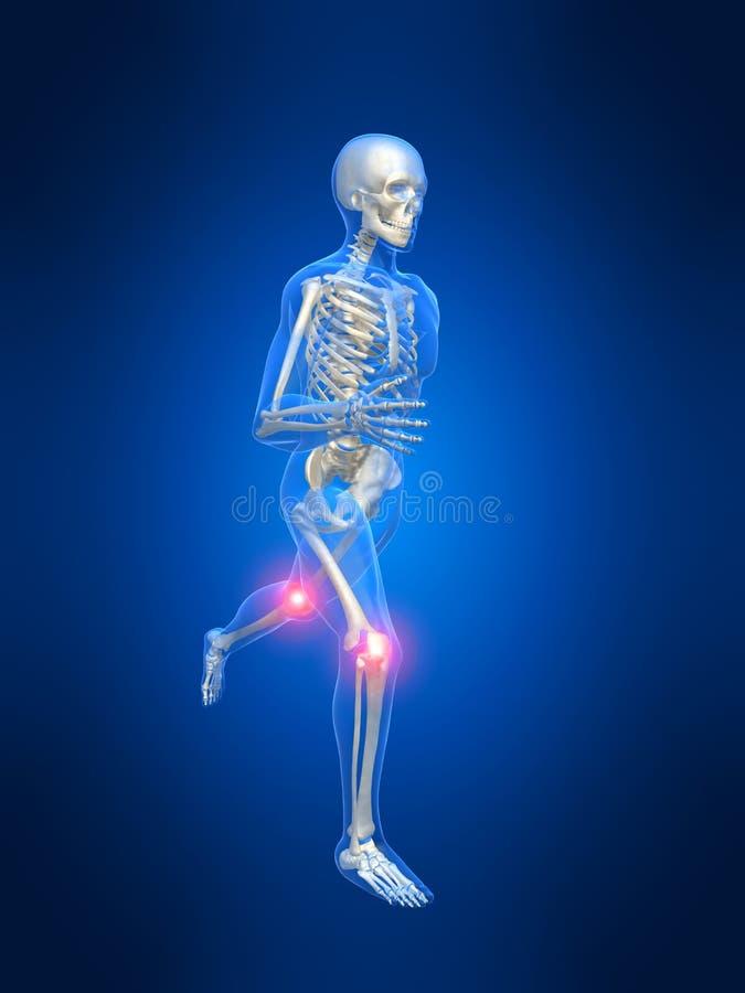 Vistoso Anatomi Del Infierno Imagen - Imágenes de Anatomía Humana ...