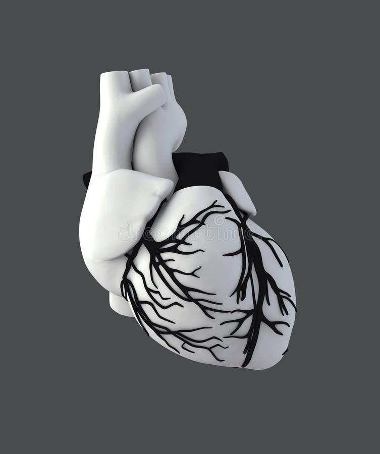 Bonito Grises Seaosn Anatomía 10 Componente - Imágenes de Anatomía ...