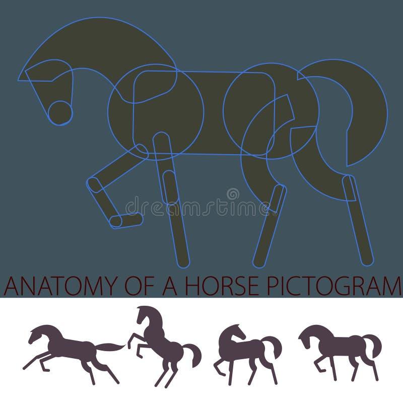'Anatomía' de un pictograma del caballo libre illustration