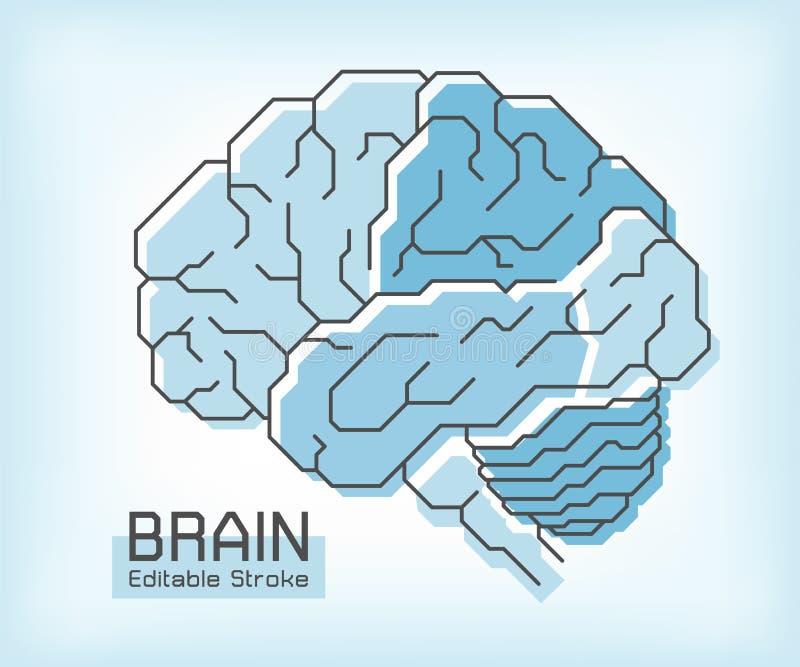 Anatomía del cerebro y movimiento del esquema Cerebelo temporal parietal frontal y médula oblonga del lóbulo occipital Concepto M stock de ilustración
