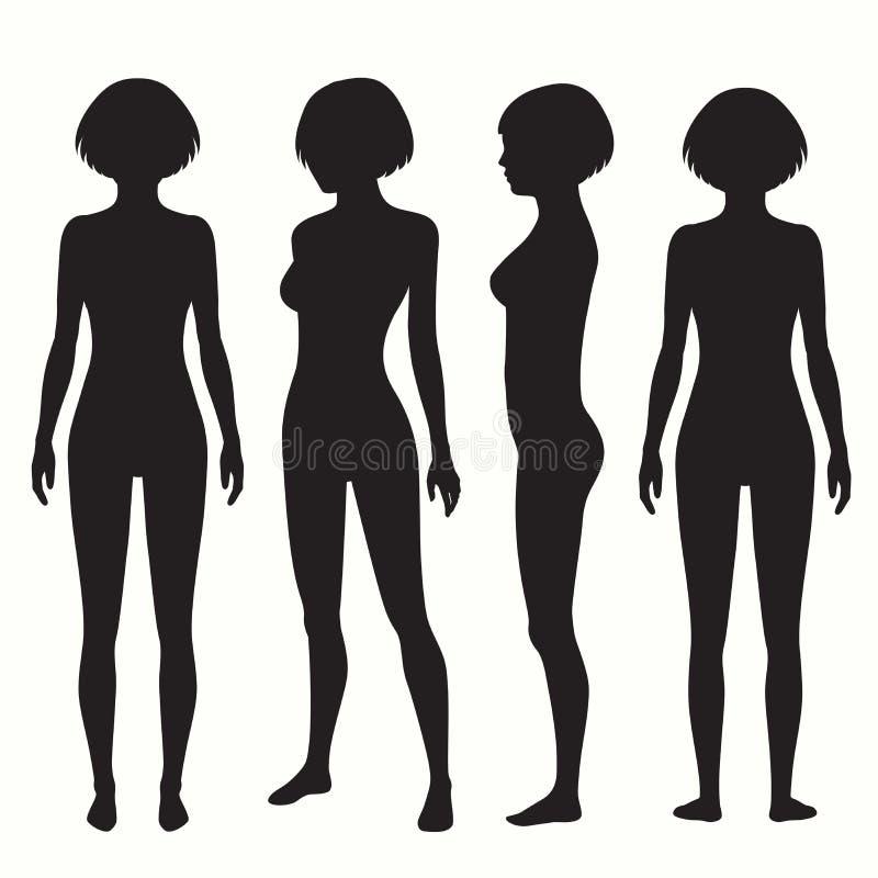 Anatomía del cuerpo humano ilustración del vector