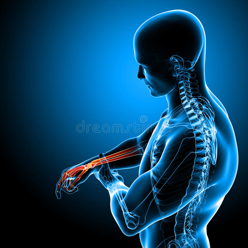 Anatomía del dolor de la mano en azul ilustración del vector