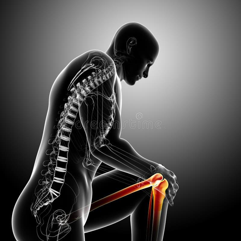 Anatomía del dolor de la rodilla en gris ilustración del vector