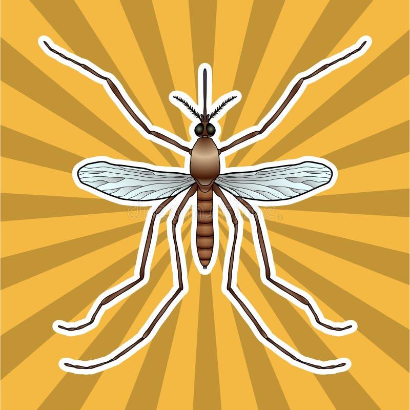 Moderno Anatomía De Un Insecto De La Píldora Ideas - Imágenes de ...