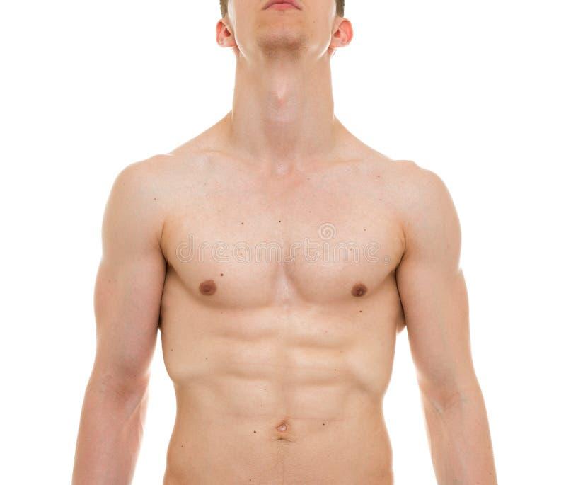 Anatomía Del Pecho Masculino - El Hombre Muscles A Front View Foto ...