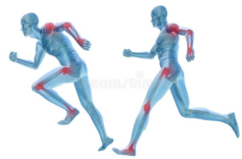 anatomía humana del dolor del hombre 3D aislada libre illustration