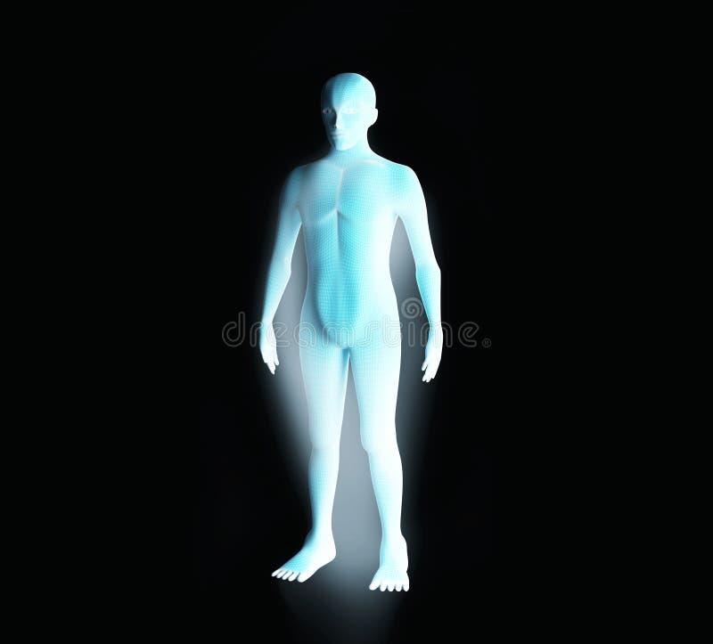 Anatomi av det male muskulösa systemet Blått mänskligt wireframehologram stock illustrationer