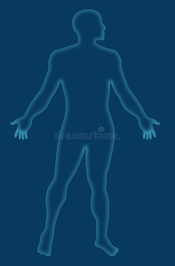 anatomia świateł człowiek styl x ilustracja wektor
