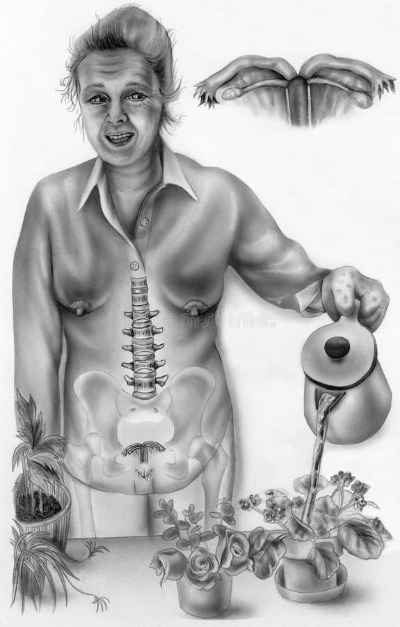 Anatomia del ` s delle donne nella vita di tutti i giorni 3 - la donna postmenopausale fotografia stock
