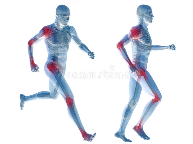 anatomia humana da dor do homem 3D isolada ilustração stock