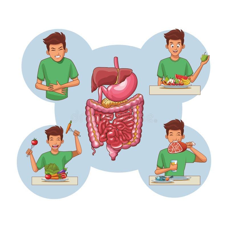 Anatomia humana nova ilustração stock