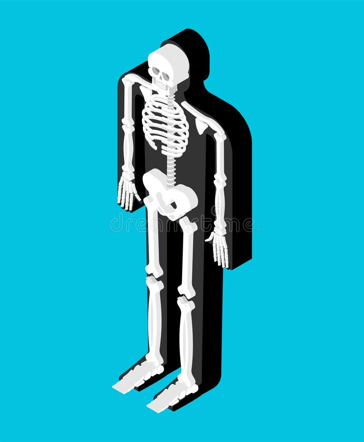 Anatomia isométrica de esqueleto do corpo humano Órgãos internos 3D SK ilustração do vetor
