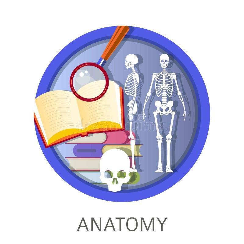 Anatomia istota ludzka, szkolne klasy, dyscyplina przy uniwersytetem royalty ilustracja