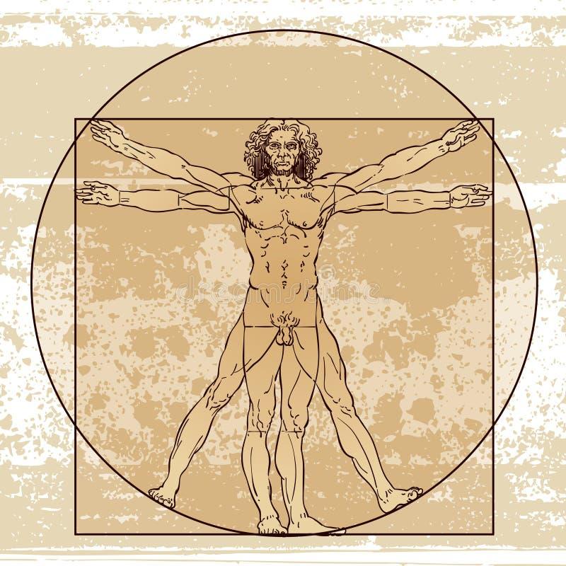 Anatomia maschio illustrazione di stock