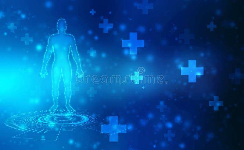 Anatomia maschio umana, fondo medico e di sanità maschio umano del corpo, del muscolo royalty illustrazione gratis