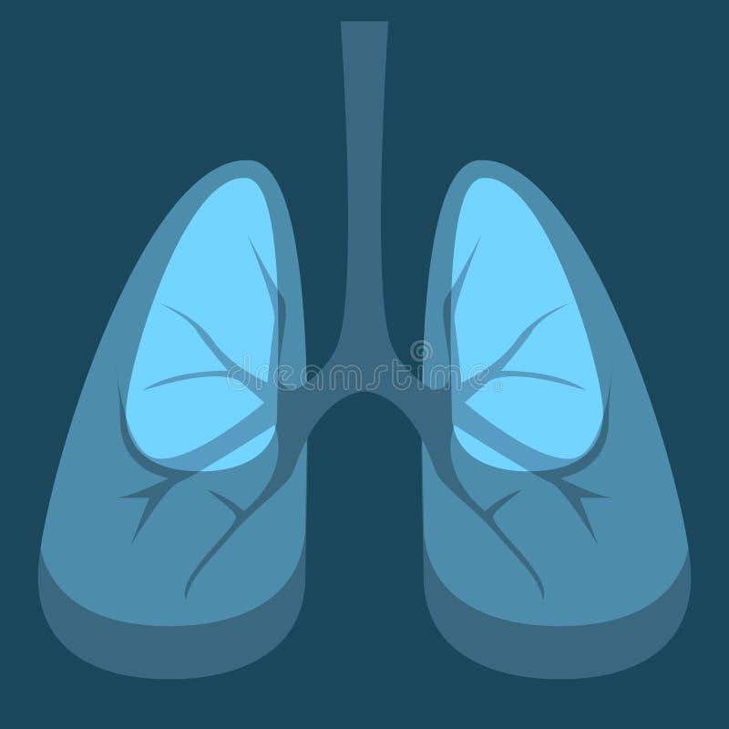 Anatomia umana di lungsmedicine degli organi interni illustrazione di stock