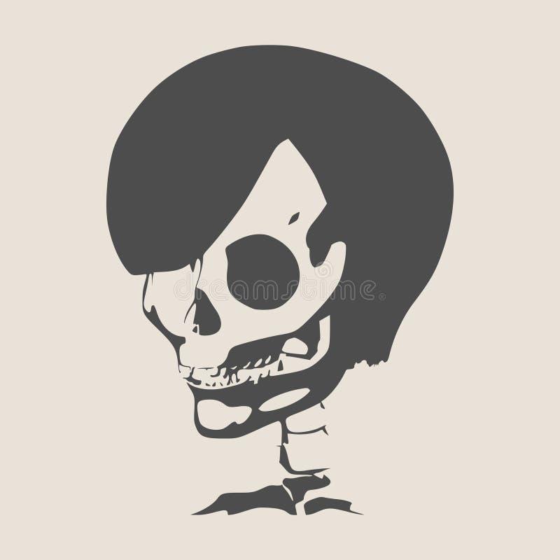 Anatomic Illustration Of Skull Stock Vector Illustration Of