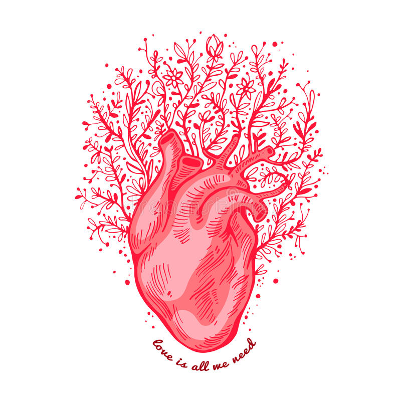 Anatomical heart with flowers. tagline love is all we need. Valentines day card. Vector illustration, elements for vector illustration