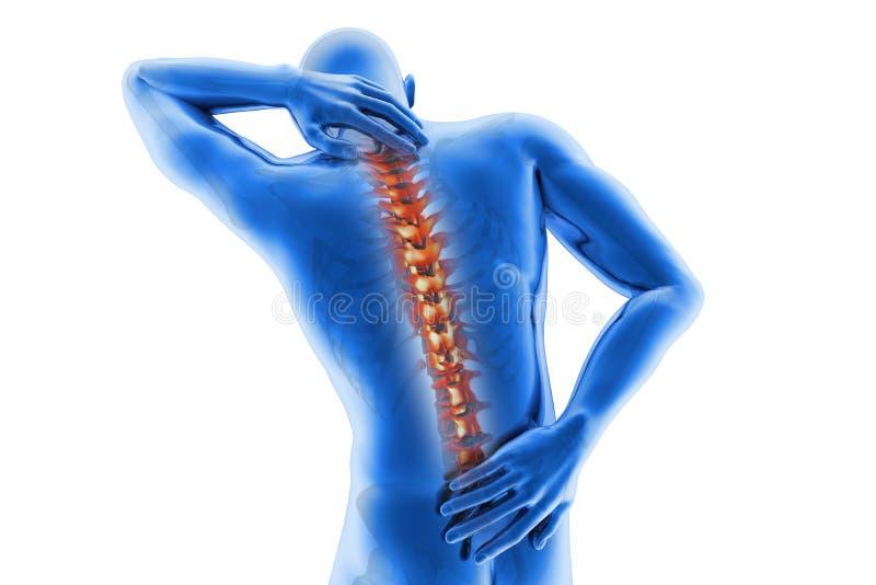 Anatomical vision back pain stock illustration
